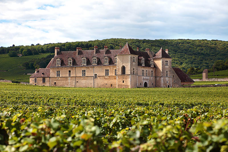 Burgundy,France - September 10, 2013: Landscape view of a typical sunlit vineyard in Burgundy, France with Chateau Clos Du Vougeot, stone walls and hills in the background.