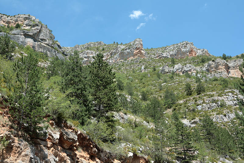 Tarn canyon in Loz?re,Languedoc region of france