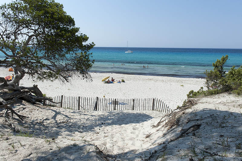 Europe, France, Corse, Haute Corse (2B). Agriates desert. Saleccia. The white sand beach.