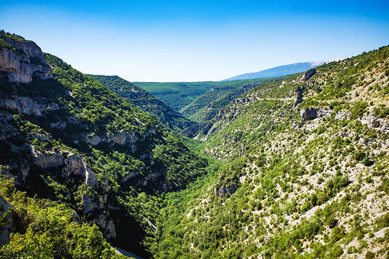 Beautiful view over a rocky and green canyon with trees and blue sky