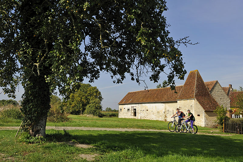 young women cycling around Corbon, Regional Natural Park of Perche, Orne department, Lower Normandy region, France, Western Europe.